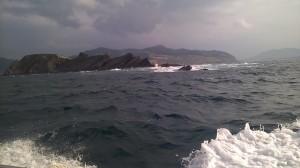 Desde la atalaya de la isla de Izaro, el vigía avistaba las ballenas cuando se acercaban a la costa.